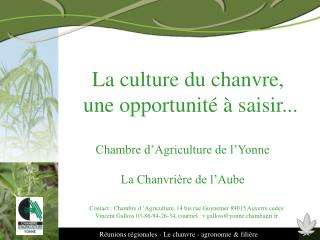 Ppt le chanvre powerpoint presentation id 425924 - Chambre agriculture aube ...