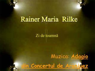Mu z ica:  Adagio din Concertul de Aranjuez