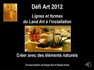 Défi Art 2012 Lignes et formes du Land Art à l'installation Créer avec des éléments naturels