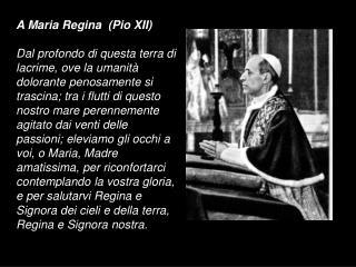 A Maria Regina  (Pio XII)