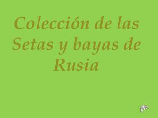 Colección de las Setas y bayas de Rusia