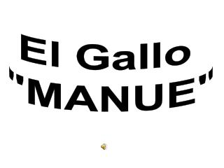 "El Gallo  ""MANUE"""