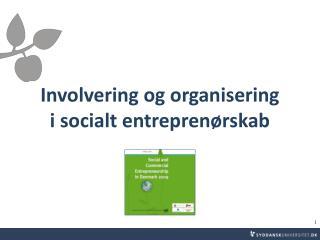 Involvering og organisering  i socialt entreprenørskab