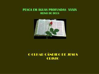 PESCA EM ÁGUAS PROFUNDAS  XXXIX REINO DE DEUS
