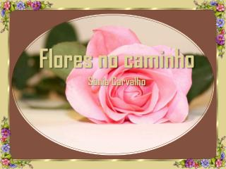 Flores no caminho S�nia Carvalho