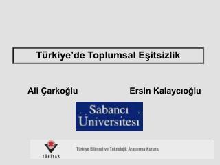 Ali Çarkoğlu