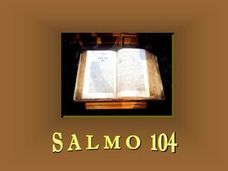 S A L M O  104