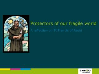 Protectors of our fragile world  A reflection on St Francis of Assisi