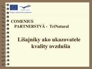 COMENIUS PARTNERSTVÁ  -  TriNatural Lišajníky ako ukazovatele kvality ovzdušia