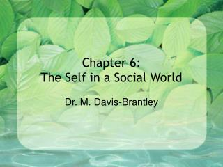 Chapter 6:  The Self in a Social World