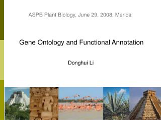 Gene Ontology and Functional Annotation