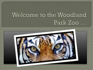 Welcome to the Woodland Park Zoo …