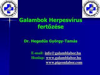 Galambok Herpesvírus fertőzése