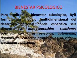 BIENESTAR PSICOLOGICO
