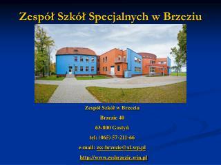 Zespół Szkół Specjalnych w Brzeziu