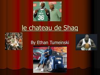 le chateau de Shaq