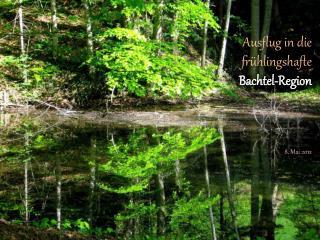 Ausflug in die fr�hlingshafte  Bachtel -Region 8. Mai 2012