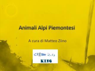 Animali Alpi Piemontesi