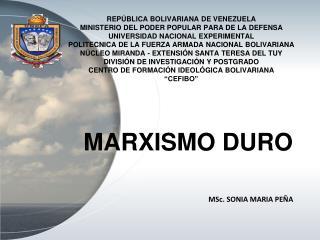 MSc. SONIA MARIA PEÑA
