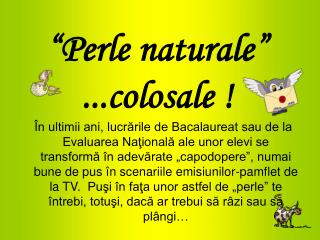 """ Perle naturale ""  ...colosale !"