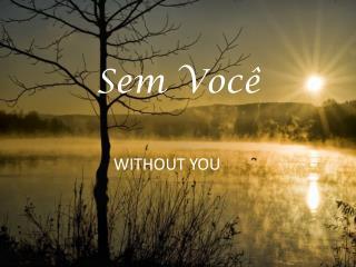 Sem Você