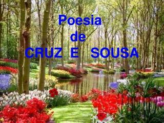 Poesia  de   CRUZ  E   SOUSA