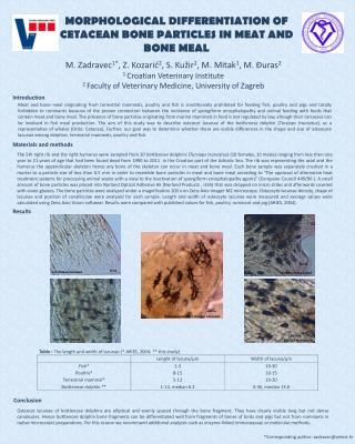 MORPHOLOGICAL DIFFERENTIATION OF CETACEAN BONE PARTICLES IN MEAT AND BONE MEAL