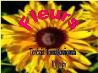 Ter�zia Toma�ovicov�           Kvarta