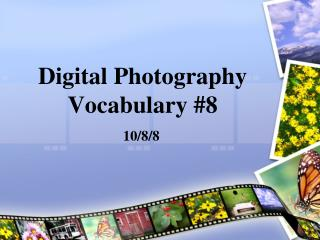 Digital Photography