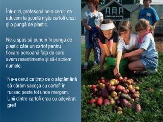 Într-o zi ,  profesorul ne-a cerut  să aducem la şcoală nişte cartofi cruzi şi o pungă de plastic.