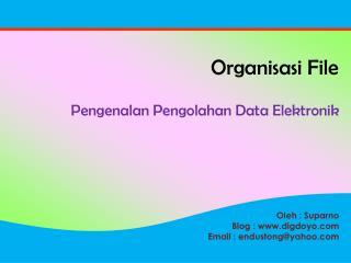 Organisasi  File