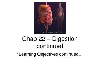 Chap 22   Digestion continued