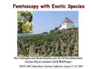 Femtoscopy with Exotic Species
