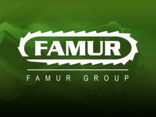 Grupa FAMUR Nowe    kierunki   modernizacji  podziemnej eksploatacji węgla