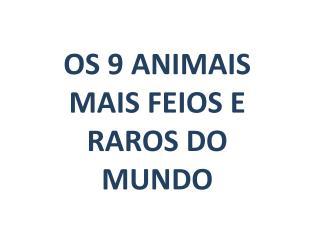 OS  9  ANIMAIS MAIS FEIOS E RAROS DO MUNDO