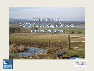 Welcome to  RSPB  Pulborough  Brooks  nature reserve