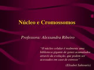 Núcleo  e Cromossomos