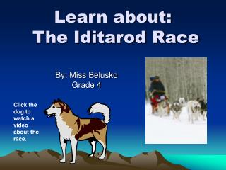 Learn about:  The Iditarod Race