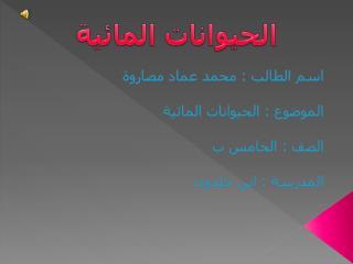 اسم الطالب : محمد عماد مصاروة الموضوع : الحيوانات المائية الصف : الخامس ب المدرسة : ابن خلدون
