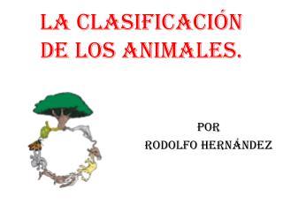 La clasificación de los animales.