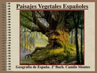 Paisajes Vegetales Españoles