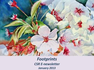 Footprints CSR E-newsletter January 2013