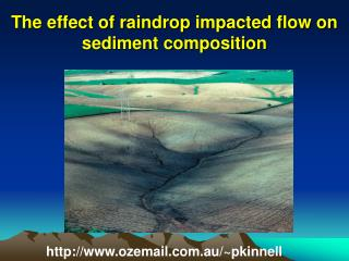 The effect of raindrop impacted flow on sediment composition