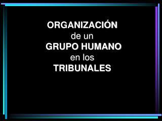 ORGANIZACIÓN de un  GRUPO  HUMANO en los TRIBUNALES