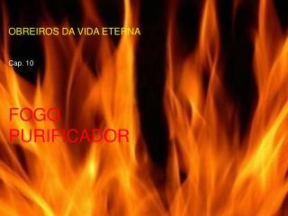 OBREIROS DA VIDA ETERNA  Cap. 10 FOGO PURIFICADOR