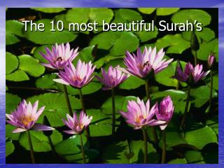 The 10 most beautiful Surah's