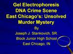 Gel Electrophoresis DNA Crime Scene East Chicago s: Unsolved Murder Mystery