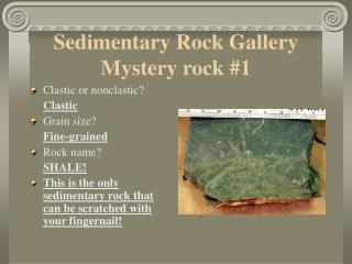 Sedimentary Rock Gallery Mystery rock #1