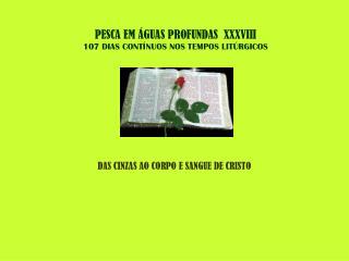 PESCA EM ÁGUAS PROFUNDAS  XXXVIII 107 DIAS CONTÍNUOS NOS TEMPOS LITÚRGICOS