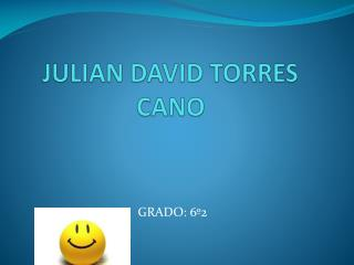 JULIAN DAVID TORRES CANO